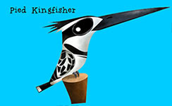 Pied Kingfisher - Green humour