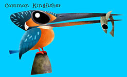 Common Kingfisher - Green humour