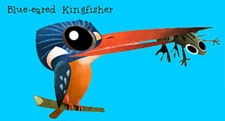 Blue-eared Kingfisher - Green humour